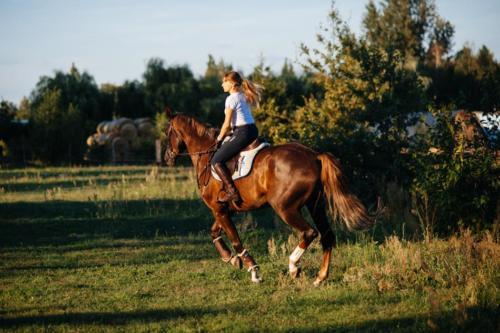 Ola Damian konie fot.Kamil Cichon 024